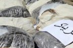 دستگیری مسافران قاچاقچی در رودبار