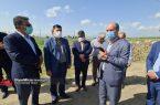 بازدید فرماندار لنگرود از دهکده توریستی تورسنگ گالشکلام چمخاله
