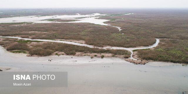 عوامل طبیعی و انسانی موثر در خشک شدن تالاب بینالمللی انزلی